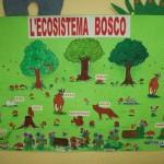 Ecosistema bosco